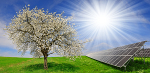 Solar energy panels with blooming tree in spring landscape.